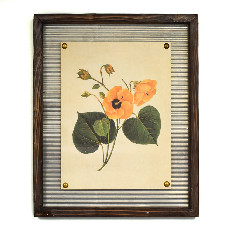 Honey Hibiscus Wall Art