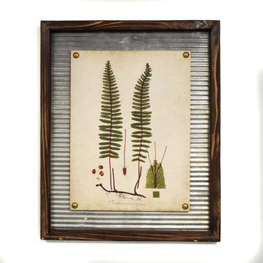 Sword Fern Wall Art