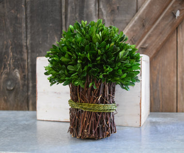 Preserved Boxwood Bouquet - Garden Style