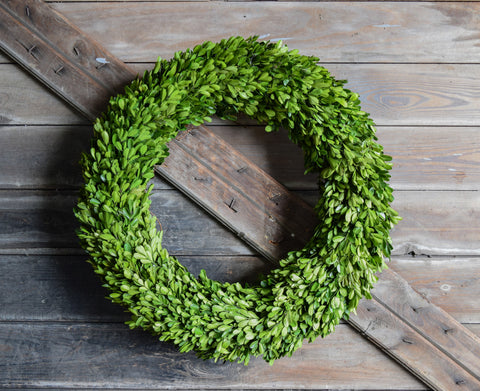 Preserved Boxwood Country Manor Round Wreath - 24""