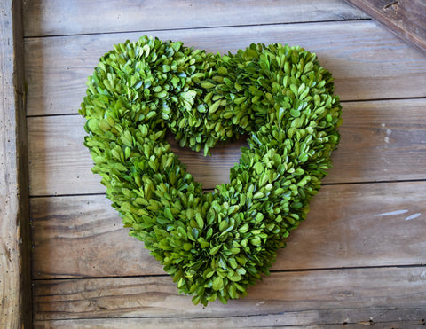 Preserved Boxwood Heart Wreath - 16""