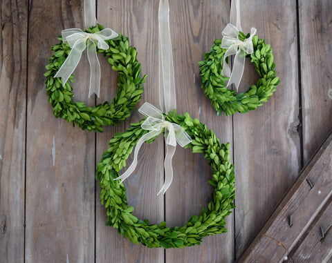 Preserved Boxwood Round Wreaths - Set of 3