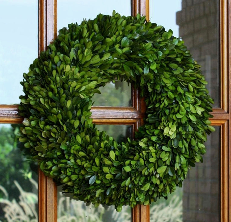 Preserved Boxwood Round Wreath - 16