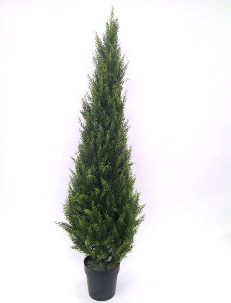 Faux Cypress Cone Tree - 5'