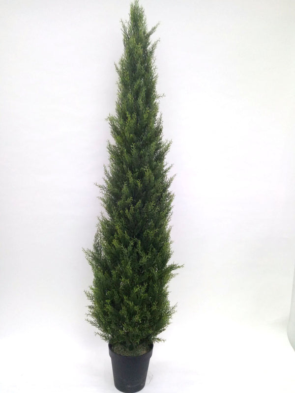 Faux Cypress Cone Tree - 6'