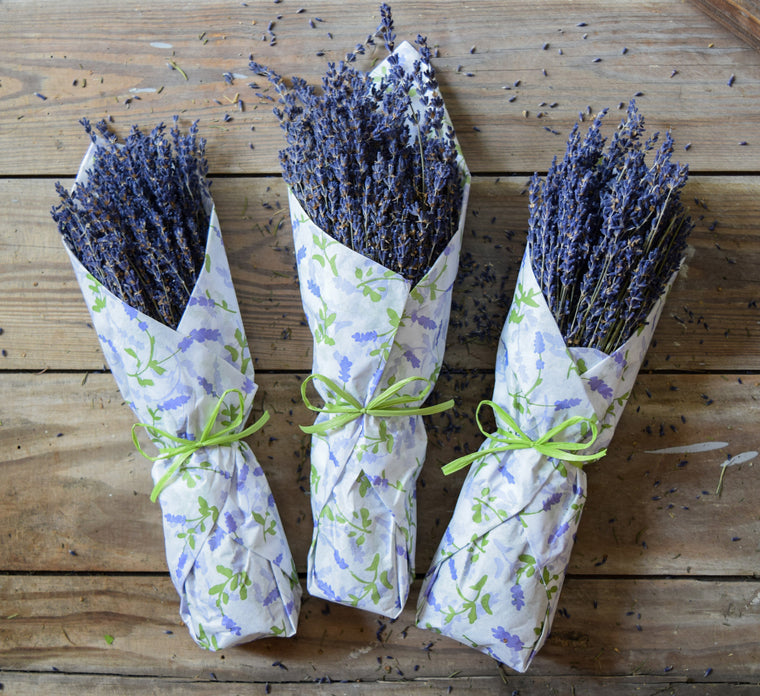 Dried French Lavender Bunch - Natural - Tissue Wrapped - Set of 3