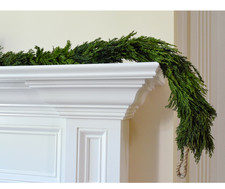 Preserved Tuscan Cypress Garland - 71