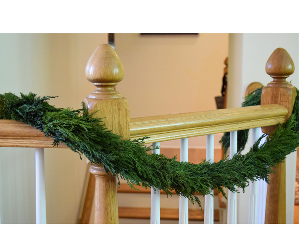 Preserved Tuscan Cypress Garland - 71""