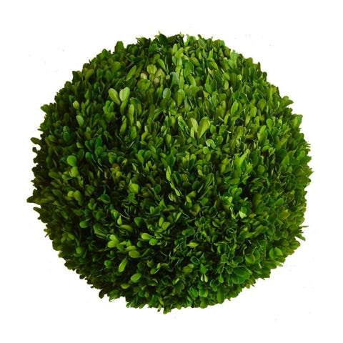 "Preserved Boxwood Ball - 16"" - HOME DECORATIVE ACCENTS - 1"