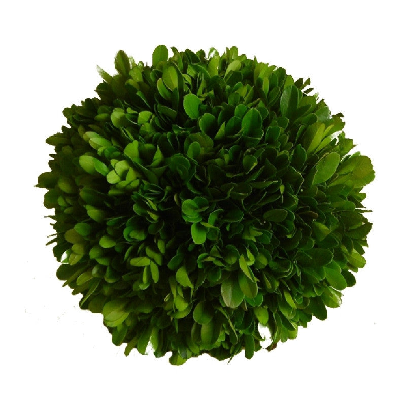 "Preserved Boxwood Ball - 4"" - HOME DECORATIVE ACCENTS - 1"