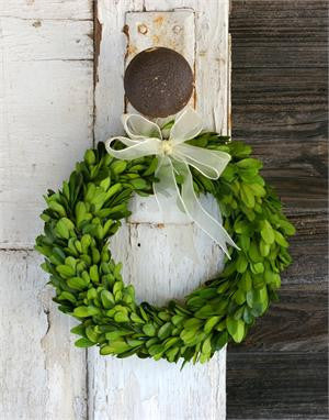 "Preserved Boxwood Round Wreath - 8"" - HOME DECORATIVE ACCENTS - 1"