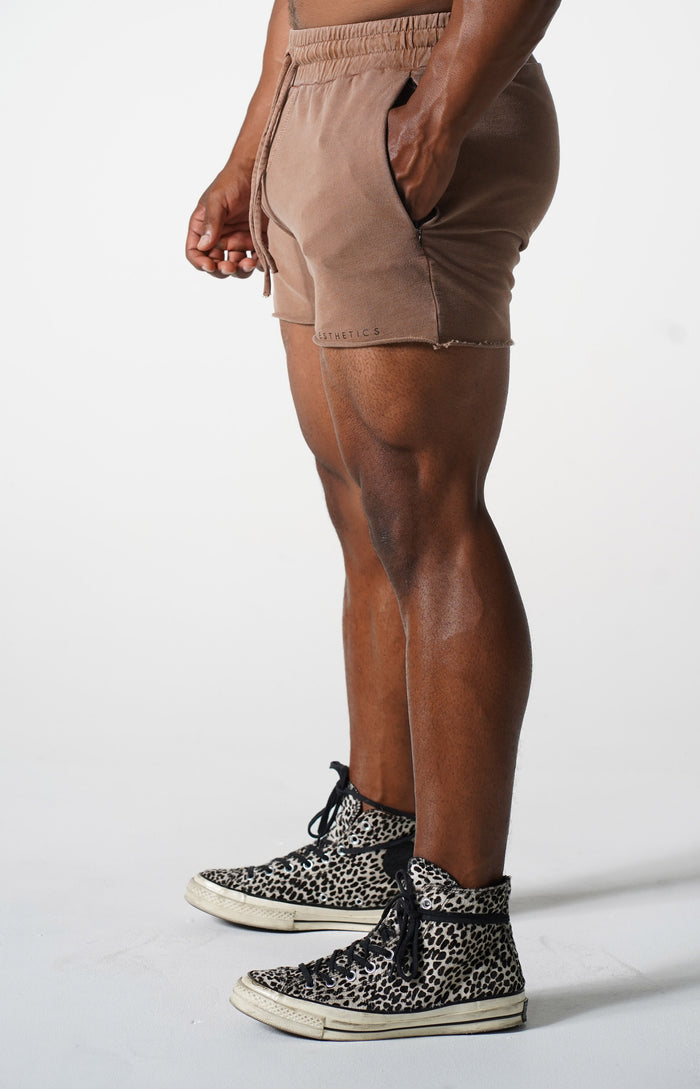 Brown Short CLassic Shorts