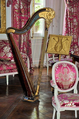 Harp in Music Room, versailles