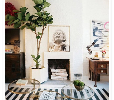 oversized plants in cute modern apartment. vintage cool style. boho chic.