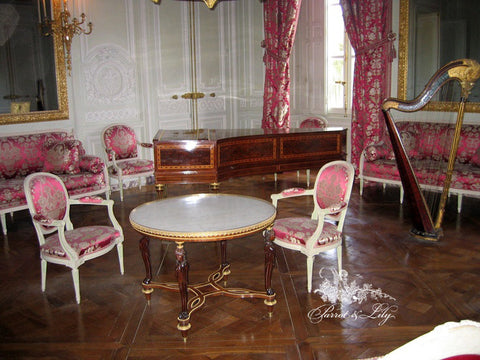 Chair iconised by Louis XVI Dining Chair Parrot Lily