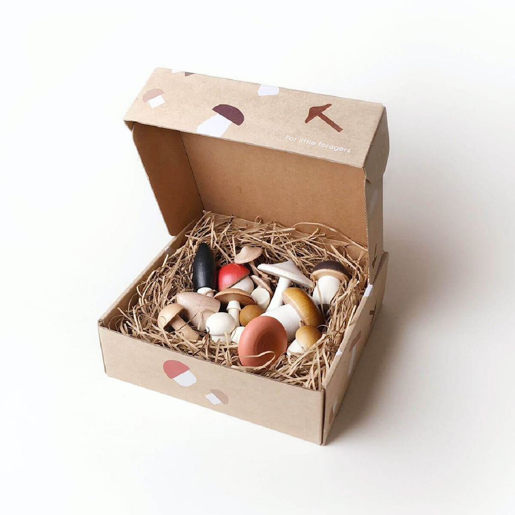 Forest Mushrooms in a Box education toy