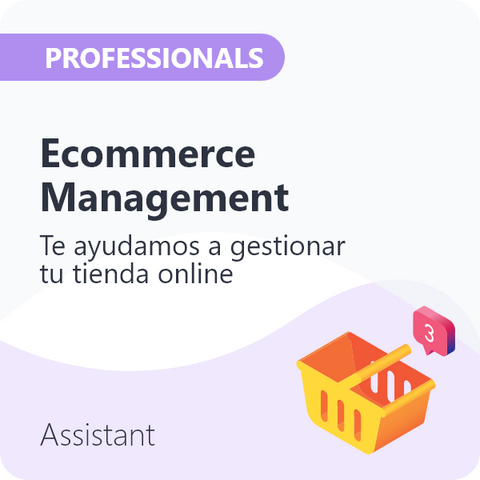 E-Commerce Management para Professionals