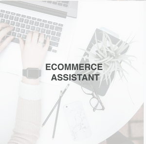 Ecommerce Assistant