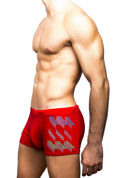 City Style Men's Swimwear - Swim Trunks Icebergs by BWET Swimwear, SWIMWEAR, BWET SWIMWEAR - BWET Swimwear