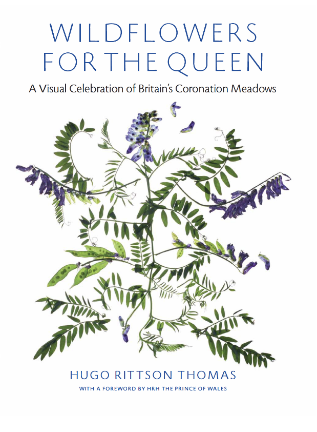 SPECIAL 20% DISCOUNT PREVIEW COPIES OF BOOK; WILDFLOWERS FOR THE QUEEN
