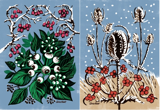Nature's festive decorations by Celia Hart twin pack Christmas cards