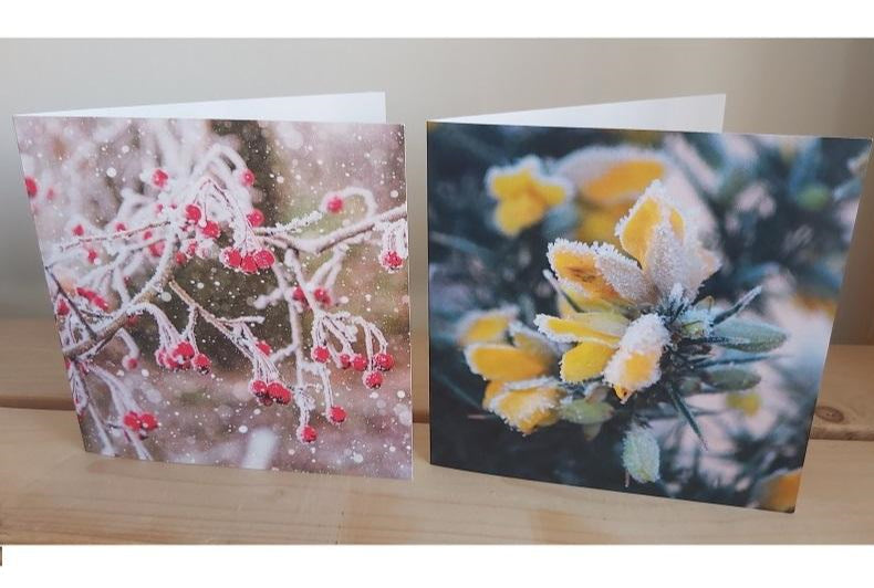 Christmas Cards - Photographic Twin Pack