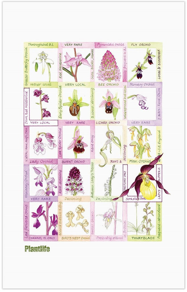Orchid tea towel