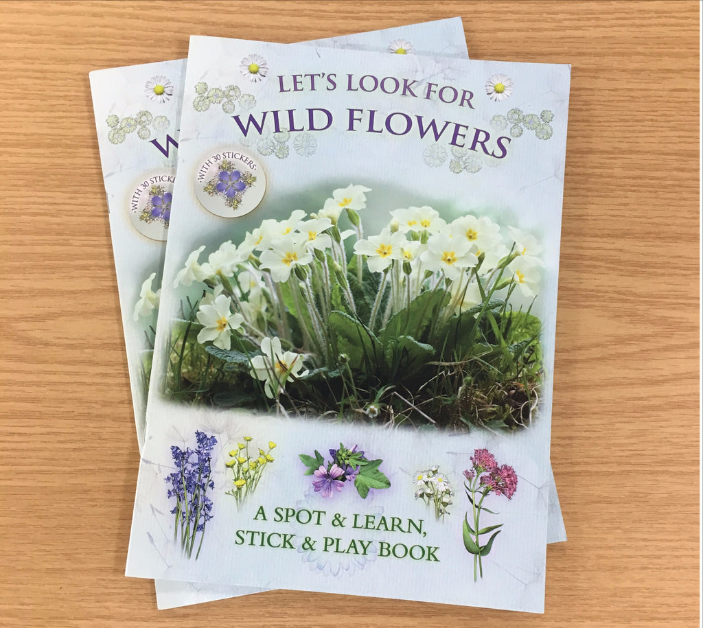 'Let's Look for Wild Flowers' children's activity book