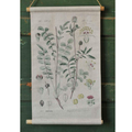 Pure Leaf Botanical Canvas