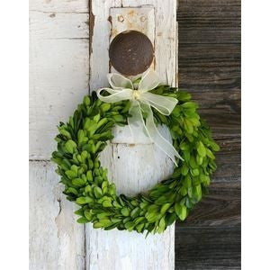 Mini Boxwood Wreath - Gin Creek Kitchen  - 1