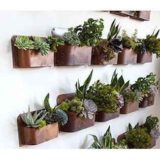 Rust Wall Planter