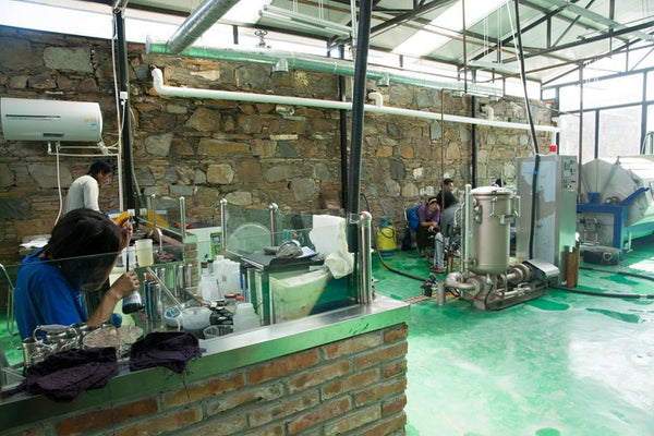 A New Dyeing Room