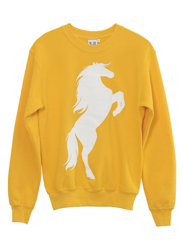PONY SWEAT