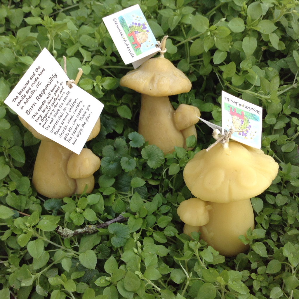 Beeswax Double Mushroom Candle - Candles - Asheville Fungi