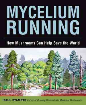 Mycelium Running: How Mushrooms Can Help Save the World - Books & DVD's - Asheville Fungi