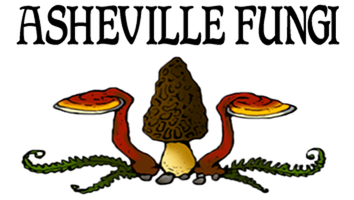 Asheville Fungi, for all your mushroom cultivation and growing needs