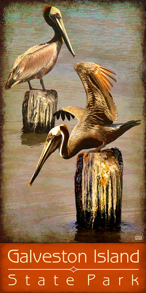 Galveston Island State Park - Texas Art Posters