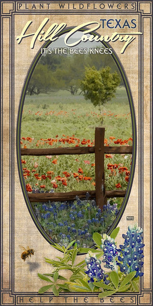 Hill Country Wildflowers - Texas Art Posters