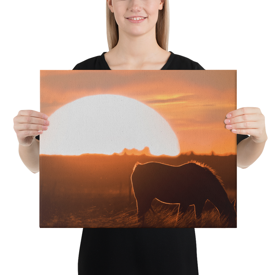 Texas Sunset Canvas