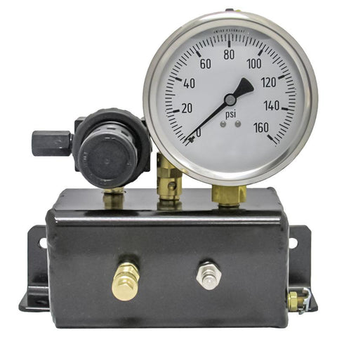 AA Analog Gauge Check Station - 160 PSI