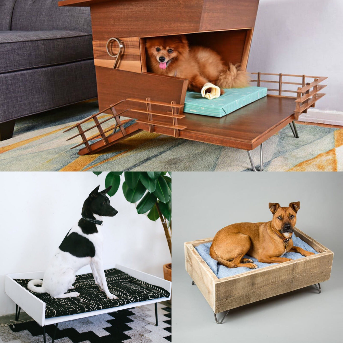 Stylish Hairpin Leg Furniture For Dogs