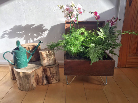 DIY hairpin leg planter