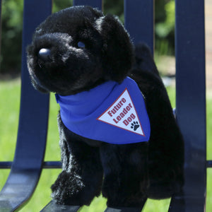 Plush Puppy - Labrador Retriever