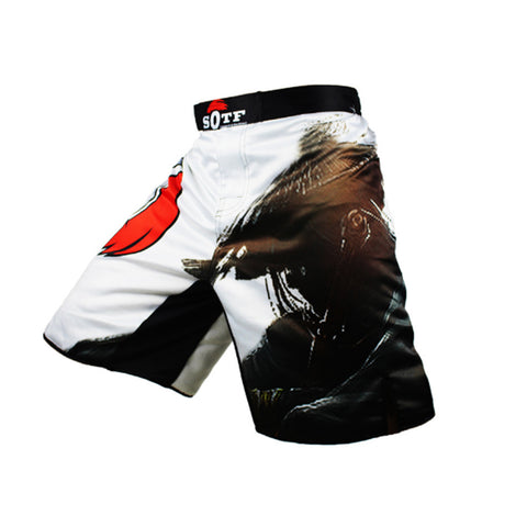 Ronin Fight Shorts