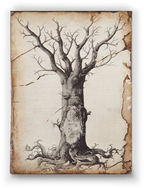 T-125 Medieval Tree of Life