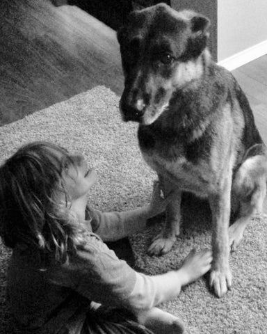Pets Make Our Family Whole - Jack the Gentle German Shepherd