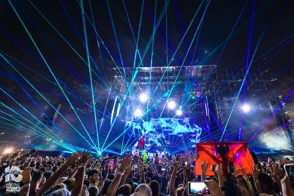 Electric Zoo at Nighttime