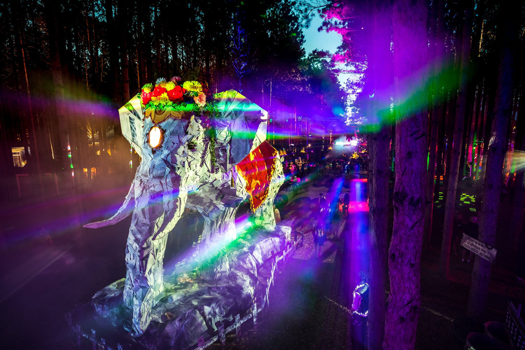 6 Tips for a Magical Electric Forest Experience