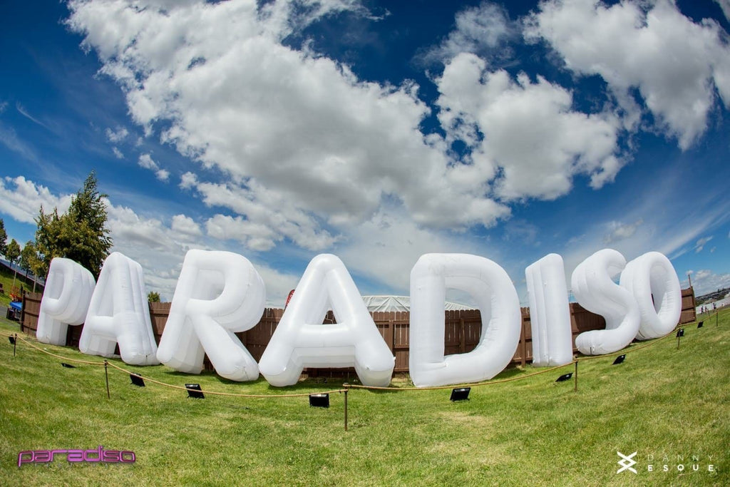 Paradiso 2018: A Beginner's Guide