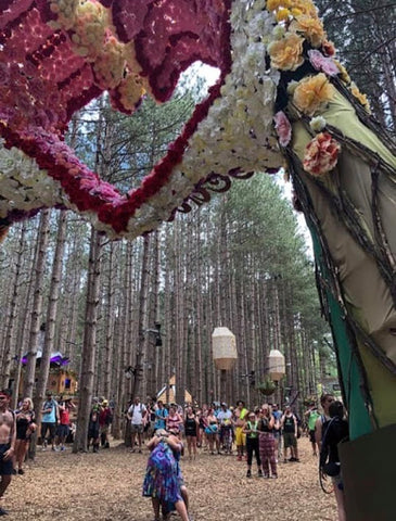 Electric Forest Proposal
